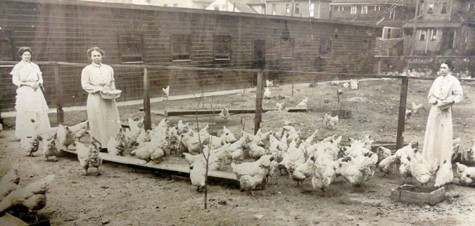 Women feeding chickens at the Indiana Women's Prison, early 20th century. Courtesy American Historical Association/Indiana Historical Society