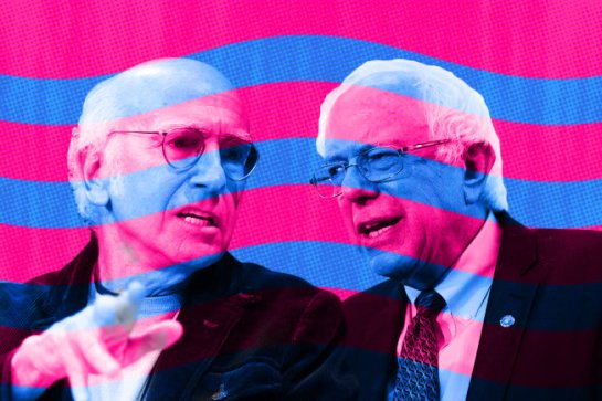 Comedian Larry David and newly announced presidential candidate Sen. Bernie Sanders aren't alike in appearance only.