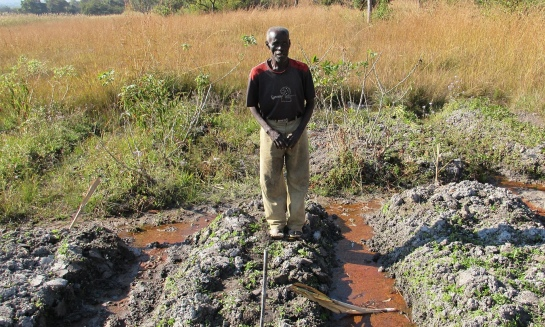 Farmer Langsu Mumbelunga in his polluted field near the Mushishima stream, Zambia. Photograph: John Vidal for the Observer