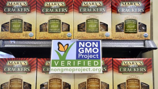 Non-GMO labels, like this one at Whole Foods, may strengthen consumer perceptions that genetically modified foods may carry risks to health. ordon Chibroski/Portland Press Herald/Getty Images